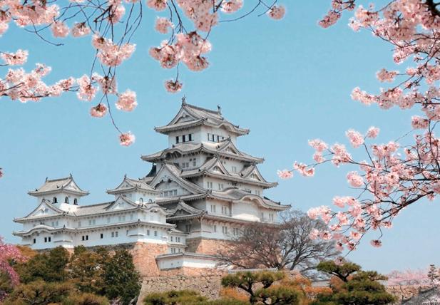 Японская профессиональная косметика и космецевтика